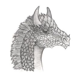 Dragon by essbeevee