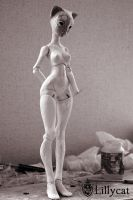 Preview Eugenie 4 by Cerisedolls