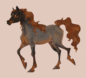 its a hoarse by Fantelle