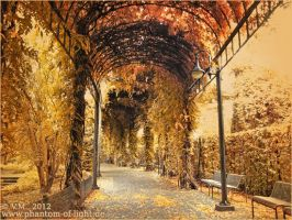 ::magical.autumn.boulevard:: by Phantom-of-light