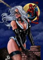 Blackcat and Spiderman_colors by Troianocomics