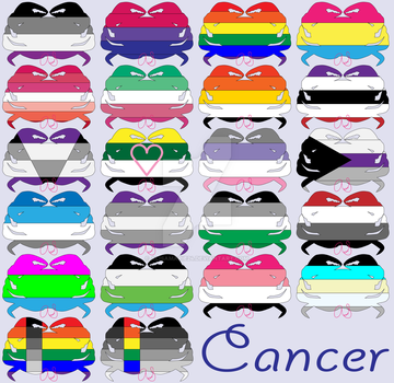 Cancer Sexuality Flags by AlisaMarie24