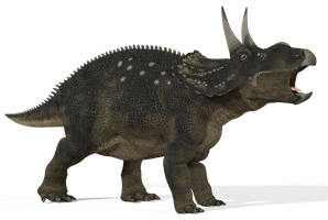 Diceratops_01 by 2ndecho