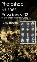 Shades Powders v.03 HD Photoshop Brushes by shadedancer619
