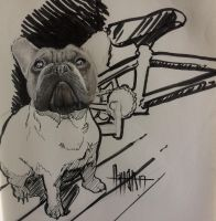 Hiperrealism face dog and bmx by norberthor