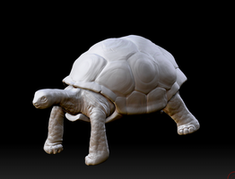 Zbrush Tortoise by Dmeville