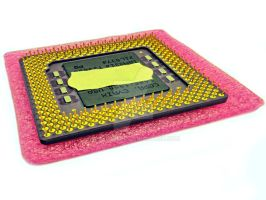 Cyrix CPU - bottom side with gold plated pins by attilasebo