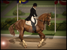 Dressage by Lone-Onyx-Stardust