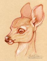 Sepia Deer by HeatherHitchman