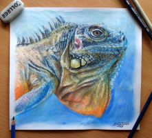 Lizard Color pencil Drawing by AtomiccircuS
