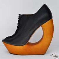 shoe of my dreams 1 by Trutze
