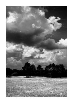 Clouds BW by Maxwell-Vibe