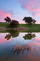 Colors of Quietness by capitaodomato111