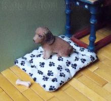 Miniature Dog Bed And Bone by Kyle-Lefort
