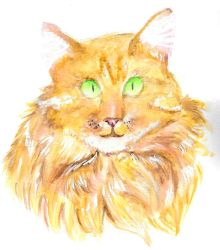 Cat Watercolor Practice by AnimeAddicter