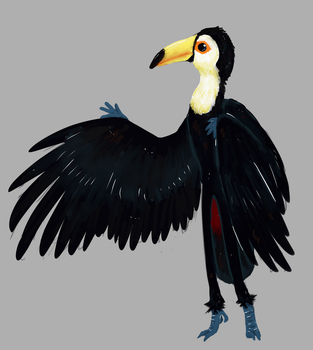 Toucan by MalwinaTruskawka