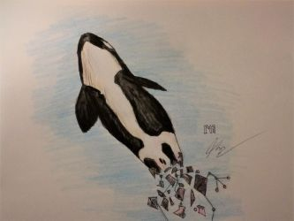 Happy Orca Awareness Month by NorcaBot