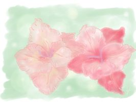 Beauty gladiole by signore-illusionista