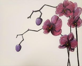 Purple Orchids by dragix