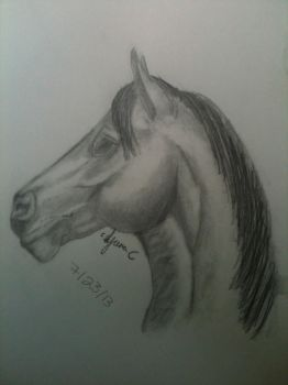 Horse by ICE46
