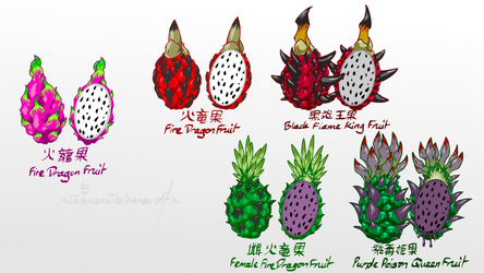 Monster Hunter - Fire Dragon Fruit by DarkmaneTheWerewolf