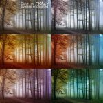Color me crazy actions by EliseEnchanted