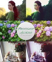 Photoshop Color Effects Actions by quillofphoenix