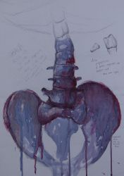 Life Drawing Anatomy: Spine and Hips by Raaawr-artist