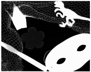 Photogram fun by goldenspines