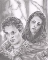 Edward and Bella by landofsunshine
