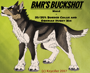 BMR's Buckshot by Krycifer