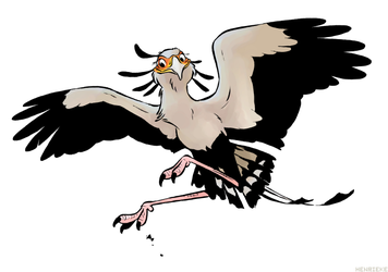 Secretary bird by Henrieke
