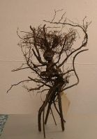 Root Thing - Tree Thing by bleaknimue