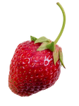 Strawberry PNG by Bunny-with-Camera