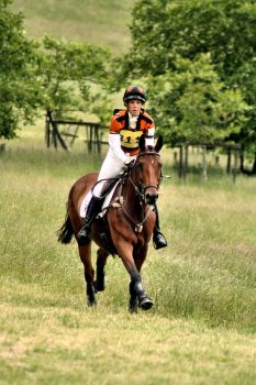 Longleat Horse Trials '10 by Hanwombat
