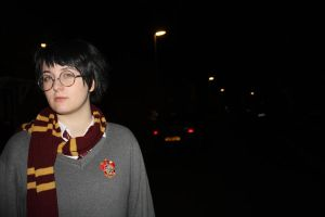 Harry Potter -  4 Privet Drive by LollypopL