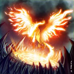 Moltres by evilself