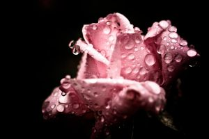 Rain and color by soulshutter