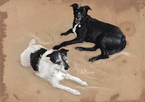 Dogs portrait by LukeMill