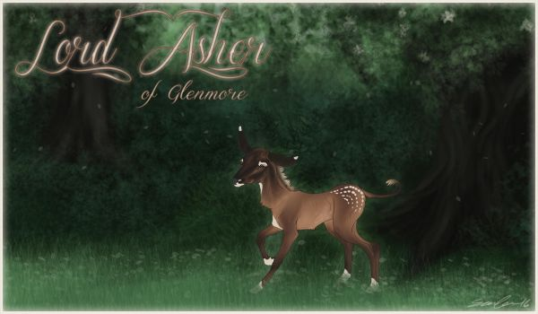 Lord Asher | Colt | Lordling by jouroo