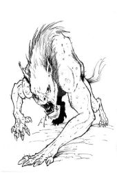 Wolf or man by OFFO