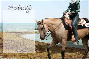 AUDACITY's American Quarter Horse Layout by magsislove