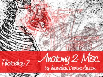 Anatomy 2 Misc. by hear3there
