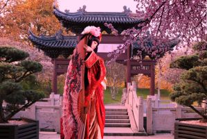 Chinese Garden by shades-of-art