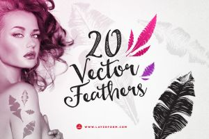20 Handsketched Vector Feathers by Layerform