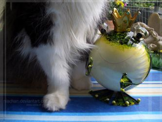 Charly and the frog.. by NiaChan