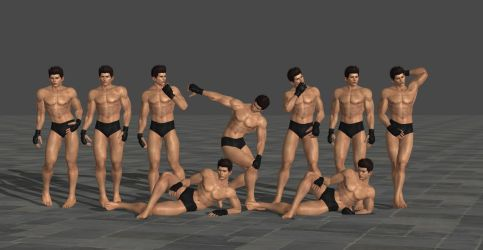 DOA Male Poses Volume 1 feat. Darksun64 by SpiderMike1991