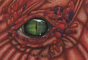 Dragon Eye by CatLaCroix