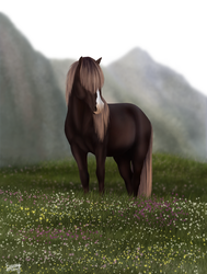 Icelandic horse by FamousFox