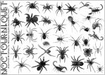 Arachnids, Eight Legged Things by Noctourniquet